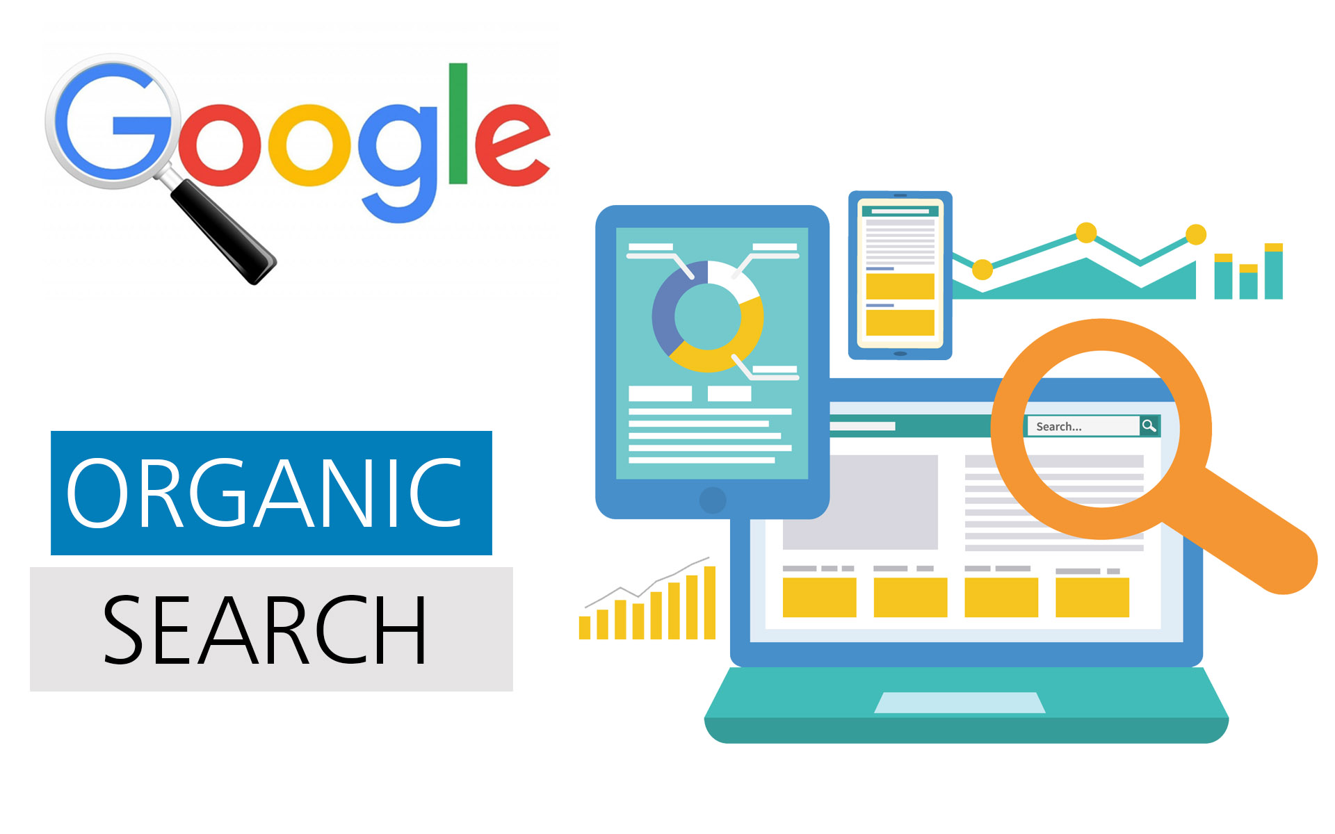Elements which are required in Website to rank high